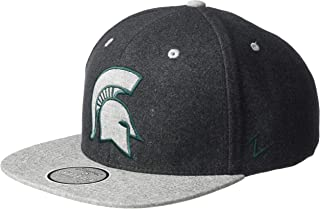 Best michigan state snapback Reviews