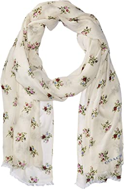 COACH - All Over Rose Buddies Oblong Scarf