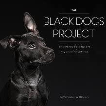 black dog artist