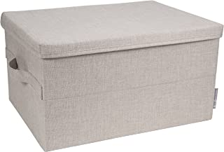 Bigso Caja de almacenamiento, Beige, Large, 1, 1