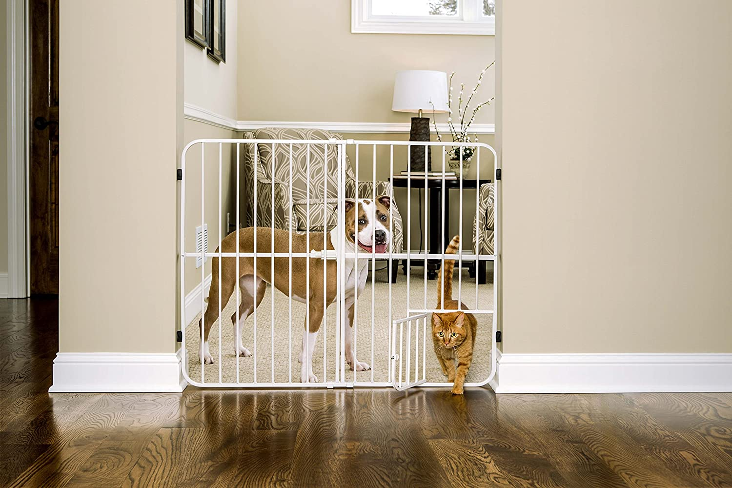 Carlson Extra Tall Metal Expandable Pet Gate White, 32 x 22 - 38