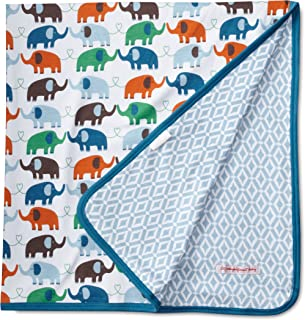 Magnificent Baby Baby-Boys Newborn Reversible Blanket