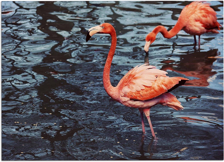 KESS InHouse AT1052ADM02 Angie Turner Pink Flamingo Animals bluee Dog Place Mat, 24 x15