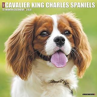 Cavalier King Charles 2018 Calendar