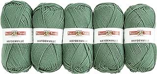 Valley Yarns Haydenville 5-Pack (Washable Worsted Weight Yarn, 60% Superwash Merino Wool/ 40% Acrylic Microfiber) - #18 Sage