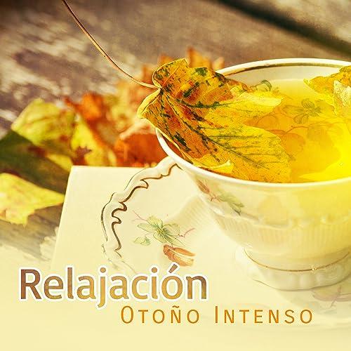 Relajación Otoño Intenso - Energía Positiva, Cura el ...