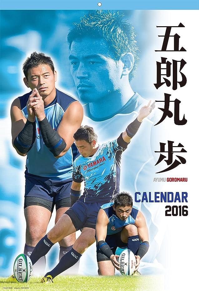 水星過剰ボーダー五郎丸 歩 選手 2016 カレンダー 壁掛け B2