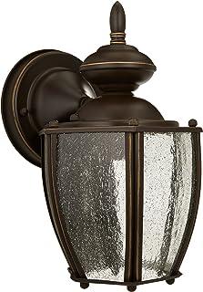Progress Lighting P5762-20 Med Wall Lantern, 1-100-watt