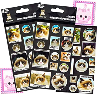 Grumpy Cat Stickers Party Favor Pack (Over 50 Stickers, 4 Sheets)