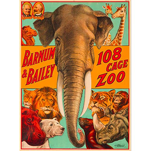 Air India For Big Game Tiger Vintage Travel Advertisement Poster