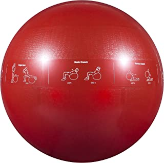 GoFit Professional Grade Stability Ball - Home Workout Supplies