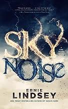 Skynoise: A Time Travel Novel