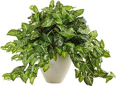 自然なネフチス 人工植物 グリーン