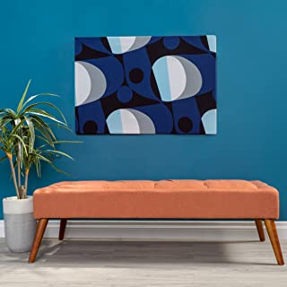 Christopher Knight Home 298888 Living Dillon Mid Century Modern Fabric Tufted Top Bench Ottoman (Orange)