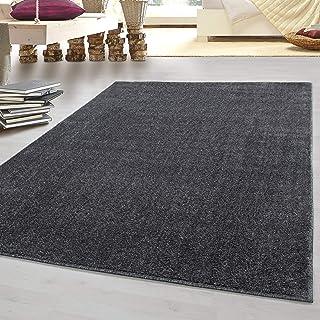 Laagpolig vloerkleed platpolig tapijt Gabbeh optiek woonkamer tapijt een kleur 7 kleuren, kleur:Grijs, Groote:240x340 cm