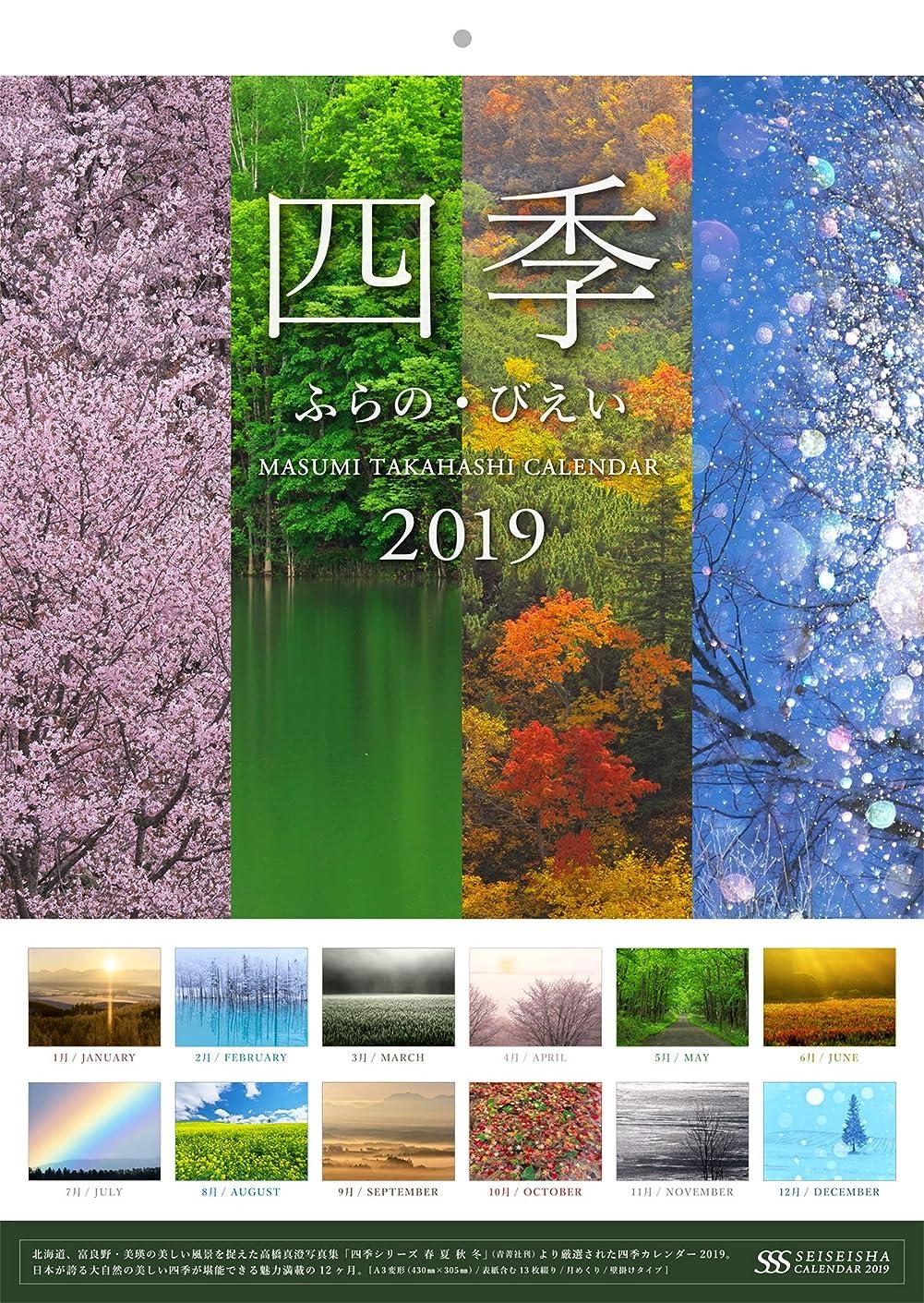 感覚対話雲高橋真澄カレンダー2019 四季 ふらの?びえい (セイセイシャカレンダー2019)