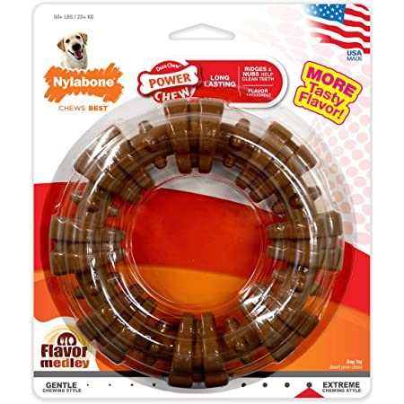 Nylabone Power Chew Textured Dog Chew Ring Toy