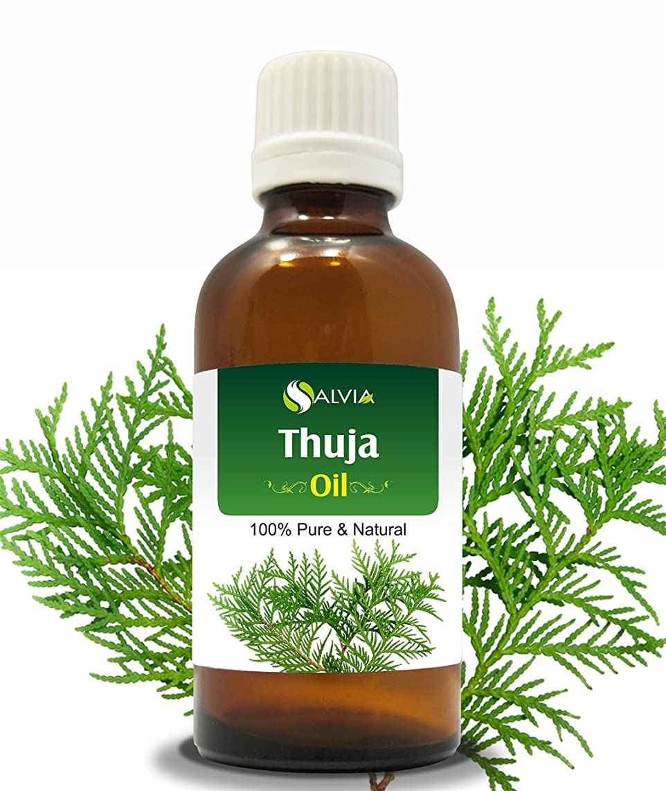 再生ホース賢いTHUJA OIL (THUJA ORIENTALI) 100% NATURAL PURE ESSENTIAL OIL 50ML