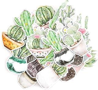 NAVY PEONY Autocollants de cactus et de plante succulente | Autocollants pour bouteilles d'eau et pour scrapbooking, stick...