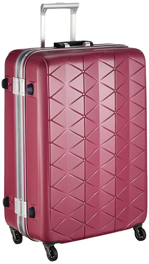 困惑した拒否クラス[サンコー] スーツケース フレーム SUPER LIGHTS MG-C 軽量 消音/静音キャスター MGC1-69 93L 69 cm 4.2kg