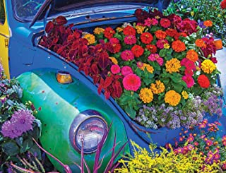Springbok 500 Piece Jigsaw Puzzle Garden Bug - Made in USA