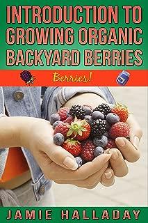 Berries: An Introduction To Growing Organic Backyard Berries (botanical, home garden, horticulture, garden, landscape, plants, gardening)