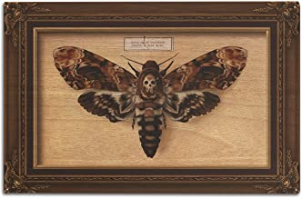 product image for Lantern Press Death's Head Moth (10x15 Wood Wall Sign, Wall Decor Ready to Hang)