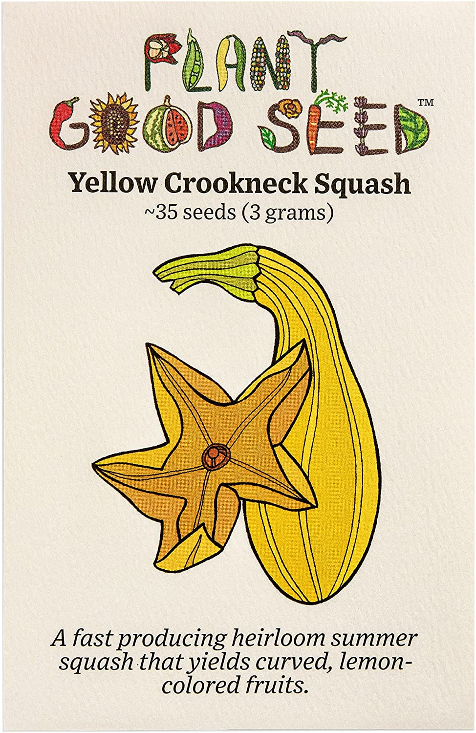 Yellow Crookneck Summer Squash Seeds Organic List price Certified ~35 New color : N