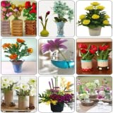 Flowers bring life to the home, and it is important to know how to keep them alive and looking beautiful. We can help you with that by showing you a collection of 100+ beautiful decorative vase designs for your home, from which most are handmade. The...