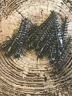 Lures By Hand 3 Hellgrammite(12 Pack)