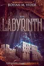 Best building a labyrinth Reviews
