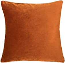 Homey Cozy Velvet Throw Pillow Cover,Orange Series Basic Solid Soft Fuzzy Cozy Warm Slik Decorative Square Couch Cushion Pillow Case 20 x 20 Inch, Cover Only