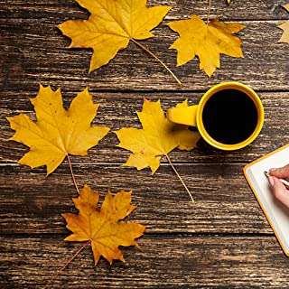 Best leaf live wallpaper android Reviews