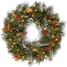 National Tree 24 Inch Wintry Pine Wreath with Clear Lights (WP1-300-24W-1)