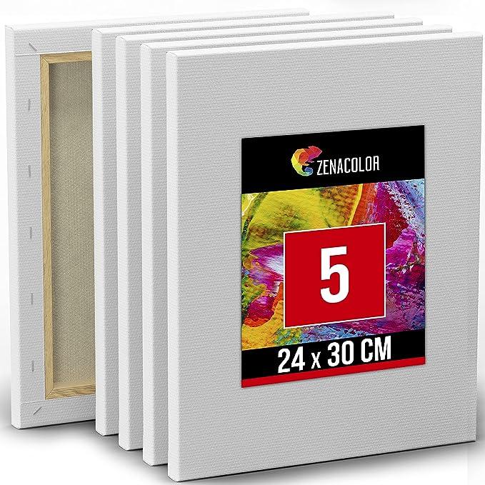 517 opinioni per Set da 5 Tele per Dipingere 24x30cm- Tela Bianca per Pittura- Per Pennelli