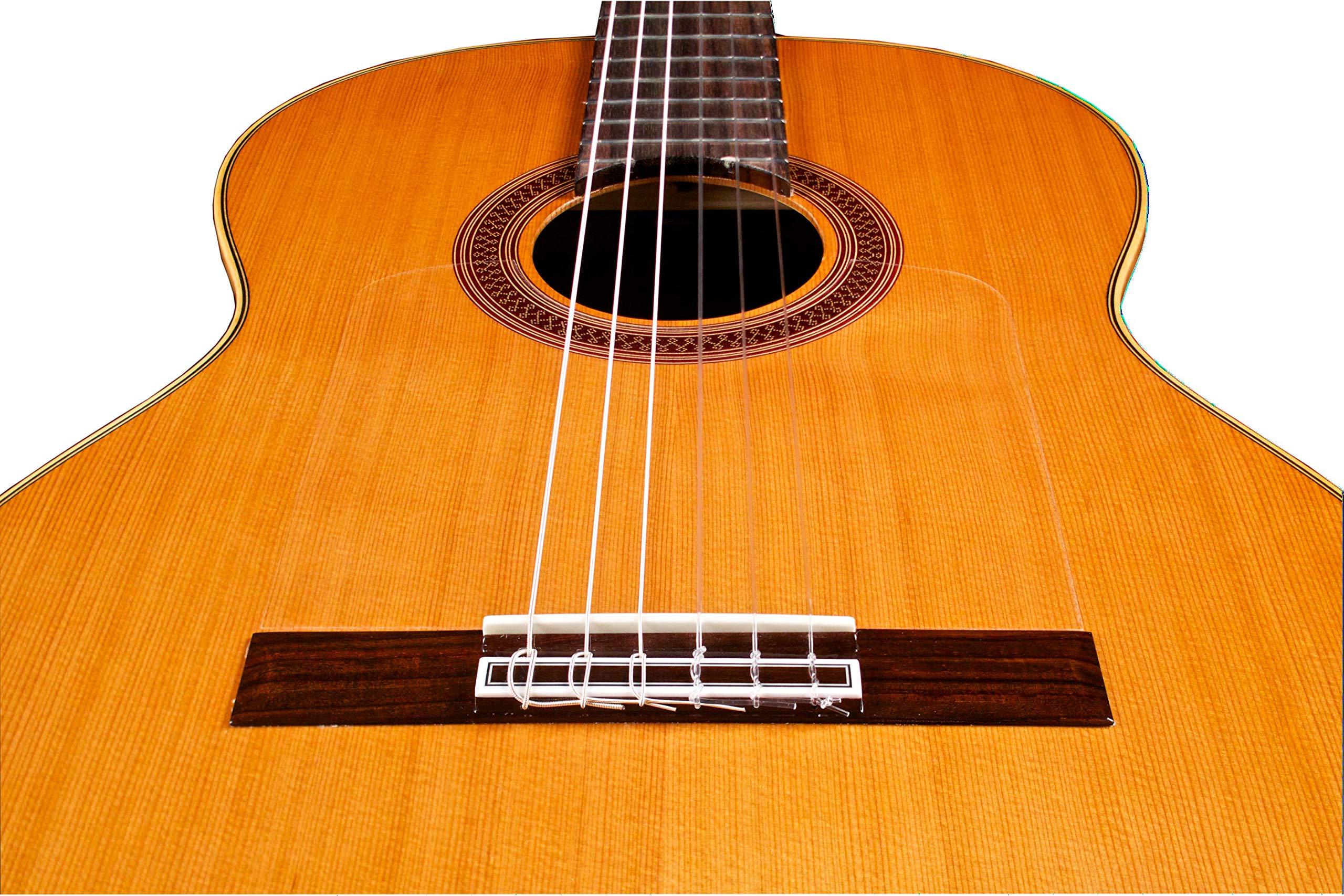 Cordoba F7 acústica de Paco Nylon String FLAMENCO guitarra: Amazon ...