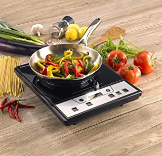 sears induction cooktop portable