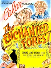 the enchanted forest film