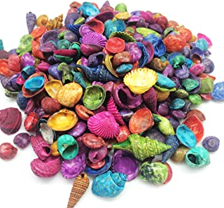 PEPPERLONELY Mixed Dyed Assorted Colors Sea Shells, 8 OZ Apprx.380+ PC Shells, 1/2Inch ~ 7/8 Inch