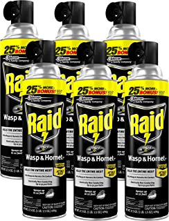 Raid Wasp and Hornet Killer, 17.5-Ounce (Pack of 6)