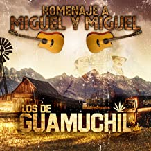 Best miguel y miguel amarga derrota Reviews
