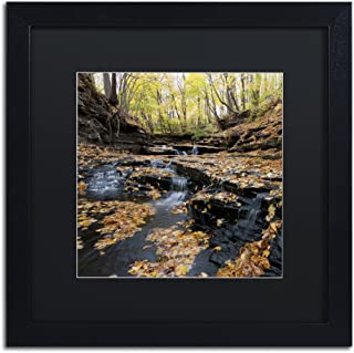 Lakeview Autumn Falls in Black Matte and Black Frame Artwork by Kurt Shaffer, 16 by 16-Inch