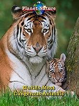 World's Most Dangerous Animals