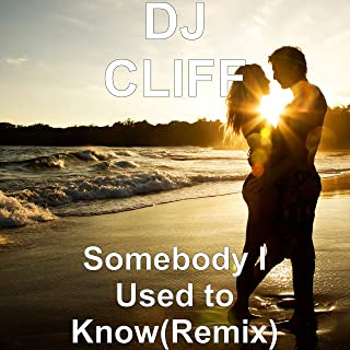 Somebody I Used to Know(Remix)