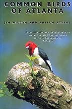 Common Birds of Atlanta