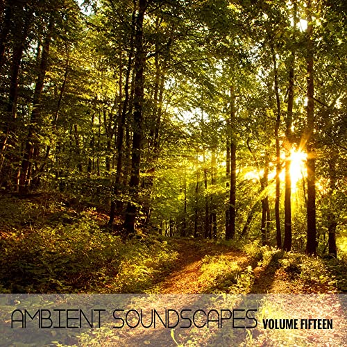 Ambient SoundScapes, Vol  15 by Terry Oldfield & Michael