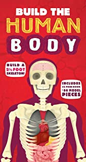 Best Complete Human Body Parts Of 2019 Top Rated Amp Reviewed