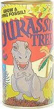 product image for Jurassic Dawn Redwood | Tree Seed Grow Kit | The Jonsteen Company
