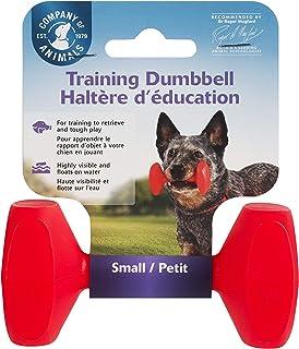 COA Training Dumbbell, Small