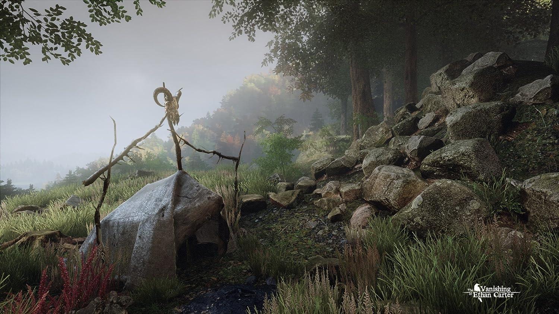 The Vanishing of Ethan Carter  Amazon.de PC & Video Games